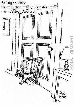 revolving cat