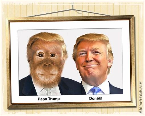 Trump_Orangutan2